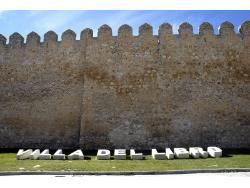 Muralla de Urueña - Villa del Libro